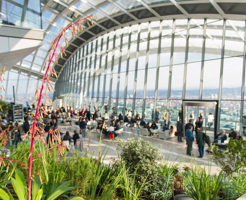 Cheap Views of London Sky Garden